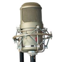 Lauten Audio Oceanus LT-381 - 03 - Synthax Audio UK